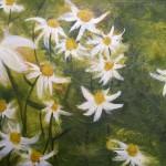 Margeriten - Acryl auf Leinwand 2013 (70x50cm)