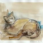 Burmesische Katze